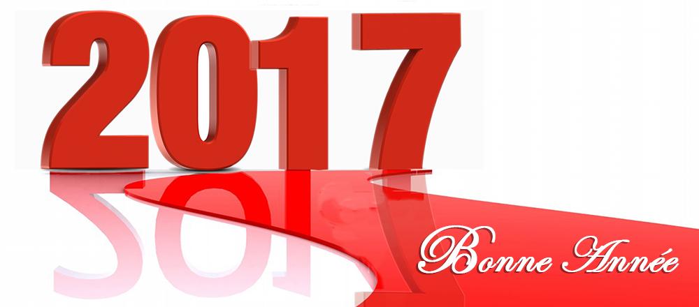 Meilleurs Vœux 2017 !