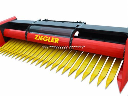 Ziegler Sunflower Champion Row Free SC740