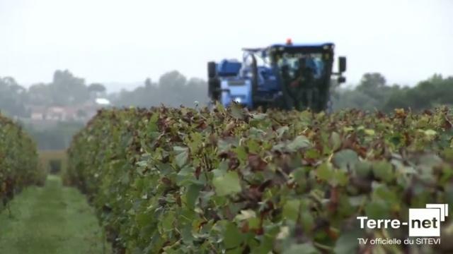 Système Opti-Grape de New Holland - A.Colmart (chef produit) : « Moins de 0,1 % de déchets dans la vendange »